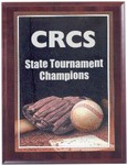 Custom Imprinted Baseball Photo Sports Plaque