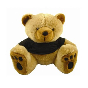 Bear Mascot Promotional Items -