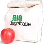 Custom Imprinted Biodegradable Lunch Sacks
