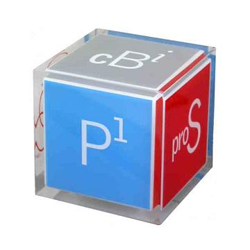 Acrylic Embedments - Cube Shaped Acrylic Embedments