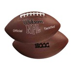 Custom Printed Official Size Footballs!