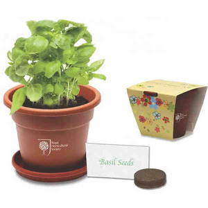 Custom Imprinted Grande Plant Grow Kits