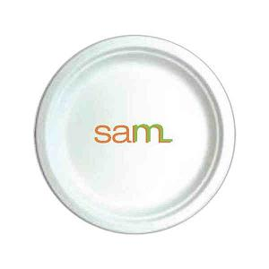 Personalized Green Environmentally Friendly Paper Plates!