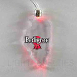 State Shaped Lighted Necklaces -