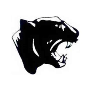 Custom Imprinted Panther Mascot Tattoos