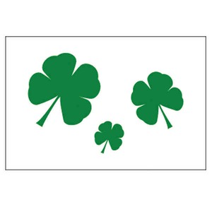 St. Patrick's Day Themed Promotional Items - St. Patrick's Day Holiday Nylon Flags