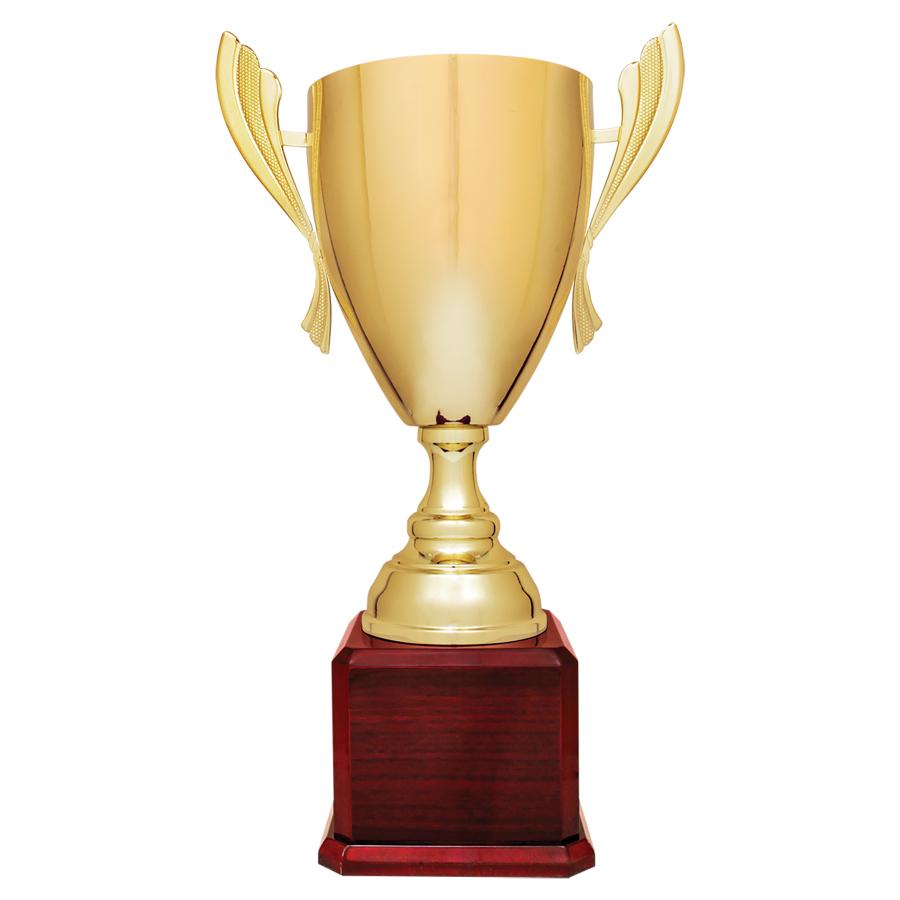 Trophy Cups -